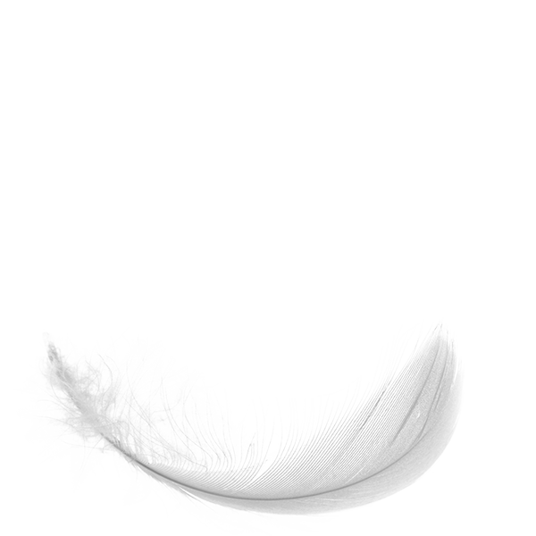 feather on rotational axis